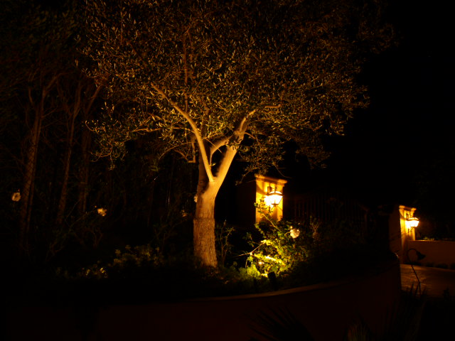 Lake Sherwood Exterior Lighting